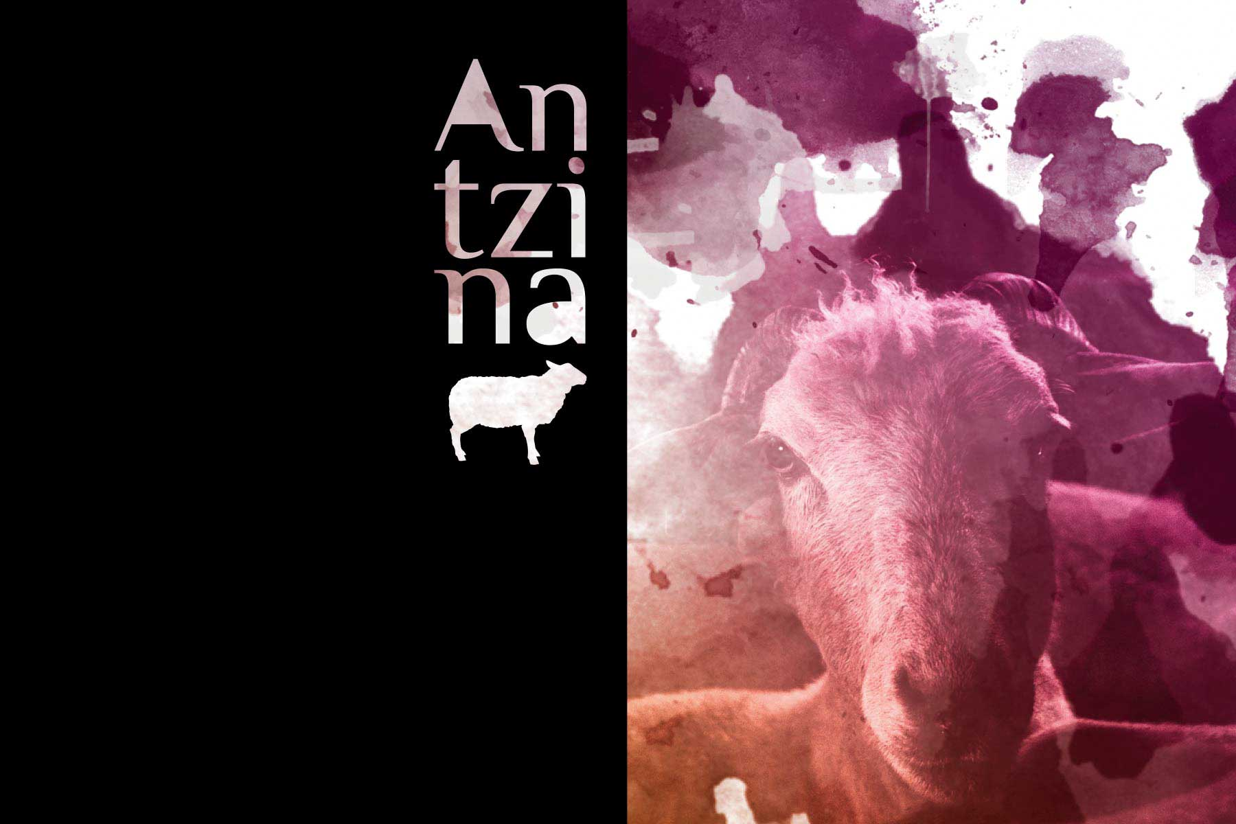 Antzina  Gazta